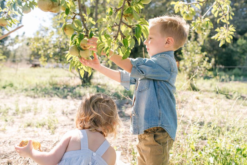 BAileys-Apples-Blog-22