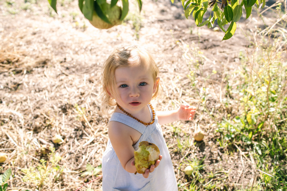 BAileys-Apples-Blog-23