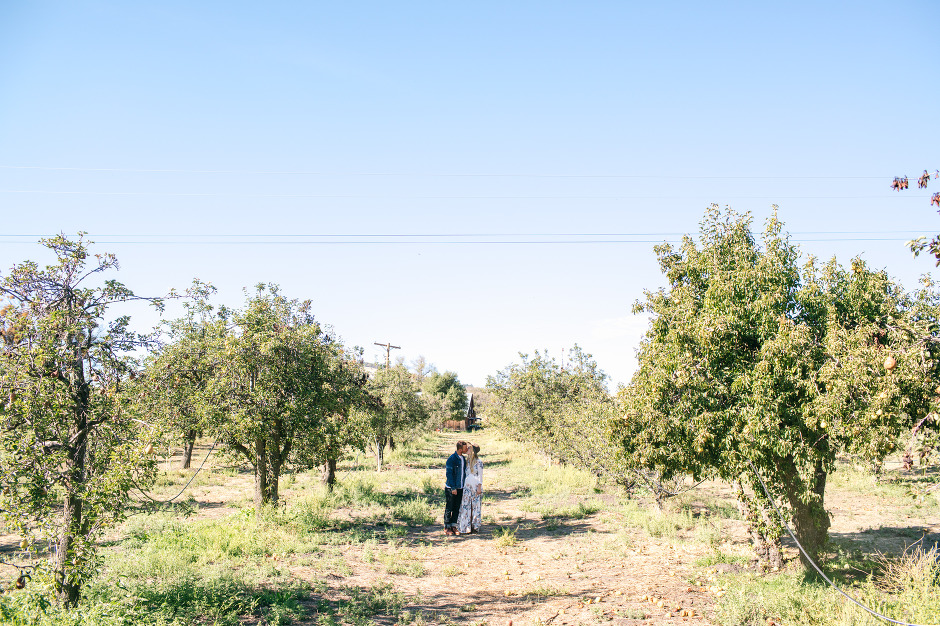 BAileys-Apples-Blog-29